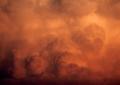Wolke am frühen Abend 3