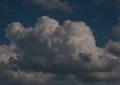 20110819-ruhpol-066