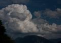 20110819-ruhpol-070